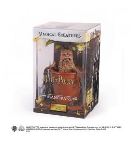 Créature Magique N°17 - Figurine Mandragore