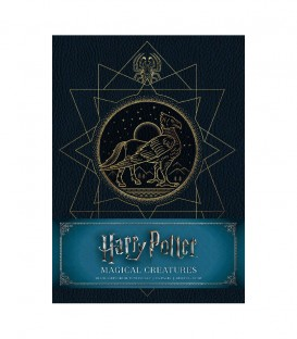 Sketchbook Harry Potter - Carnet de croquis