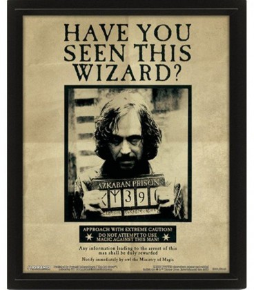 Harry Potter Sirius 3D Lenticular Poster
