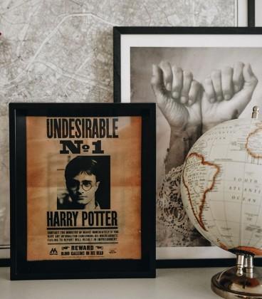 Cadre 3D Lenticulaire Harry Potter Sirius Black,  Harry Potter, Boutique Harry Potter, The Wizard's Shop