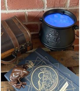 Harry Potter Cauldron Lamp