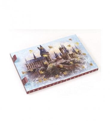 Calendrier de l'avent Accessoires Harry Potter,  Harry Potter, Boutique Harry Potter, The Wizard's Shop