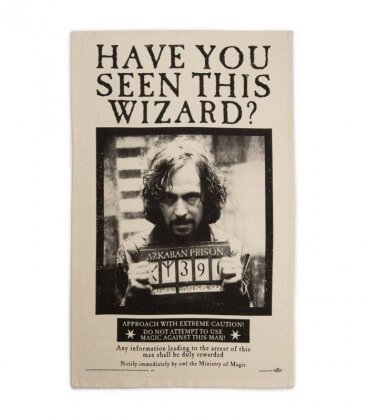 Torchon Have You Seen This Wizard,  Harry Potter, Boutique Harry Potter, The Wizard's Shop