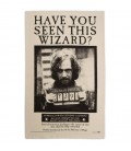 Have You Seen This Wizard Tea Towel