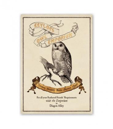 Eeylops Owl Emporium Harry Potter Poster