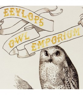 Poster Eeylops Owl Emporium Harry Potter,  Harry Potter, Boutique Harry Potter, The Wizard's Shop