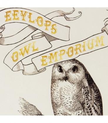 Poster Eeylops Owl Emporium Harry Potter,  Harry Potter, Boutique Harry Potter, The Wizard's Shop