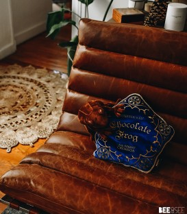 Cushion Chocogrenouille Harry Potter