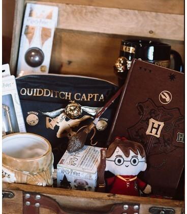 Quidditch Mystery Box