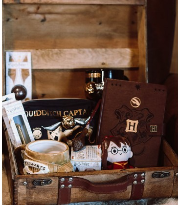 Mystery Box Quidditch,  Harry Potter, Boutique Harry Potter, The Wizard's Shop