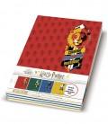Set of 4 Harry Potter Large Tiles Seyes notebooks 17 x 22 cm