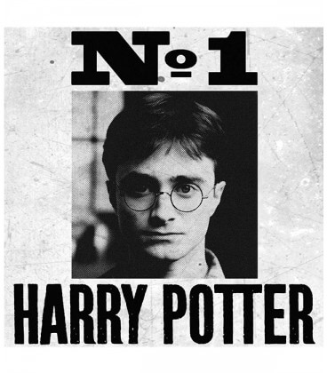 Poster - Undesirable No.1 Harry Potter