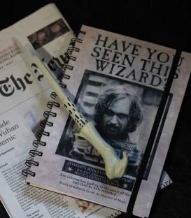 Baguette Voldemort magique stylo,  Harry Potter, Boutique Harry Potter, The Wizard's Shop