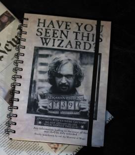 Harry Potter Sequin Flip A5 Notebook