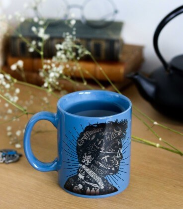 Mug Harry Potter Portrait Magique Effet Thermique,  Harry Potter, Boutique Harry Potter, The Wizard's Shop