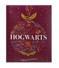 Calendrier de l'avent chaussettes 2021 Harry Potter