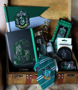 Mystery Box Serpentard,  Harry Potter, Boutique Harry Potter, The Wizard's Shop