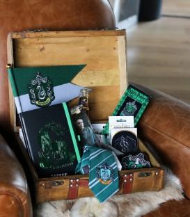 Slytherin Mystery Box