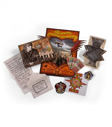 Boite Artefact - Ron Weasley