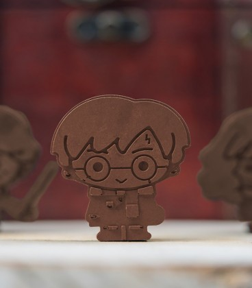 Chocolate molds and ice cubes - Harry Potter Kawaii