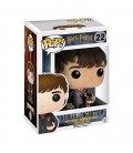 POP! Neville Longbottom Figurine
